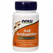 Acidophilus 4x6 Now 60 caps