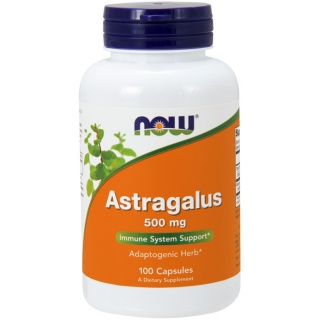 Astragalus 500 mg 100caps Now