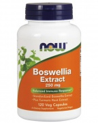 Boswellia Extract 250mg Now 120 caps