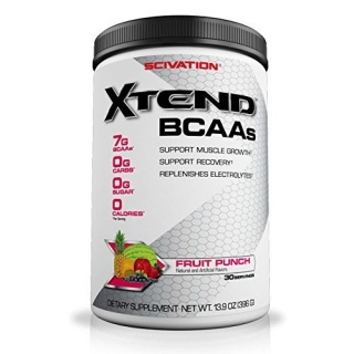X-Tend 395 gr SCIVATION Bcaa